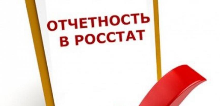 Форма 57 Т: в ноябре нужно сдать в Росстат сведения о заработной плате работников